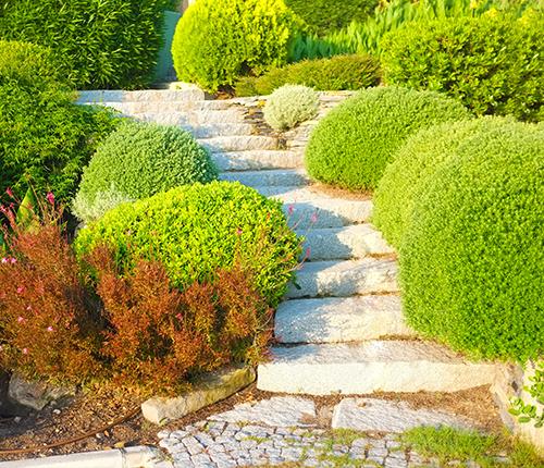 Pollet Galabau Isny Treppenanlagen